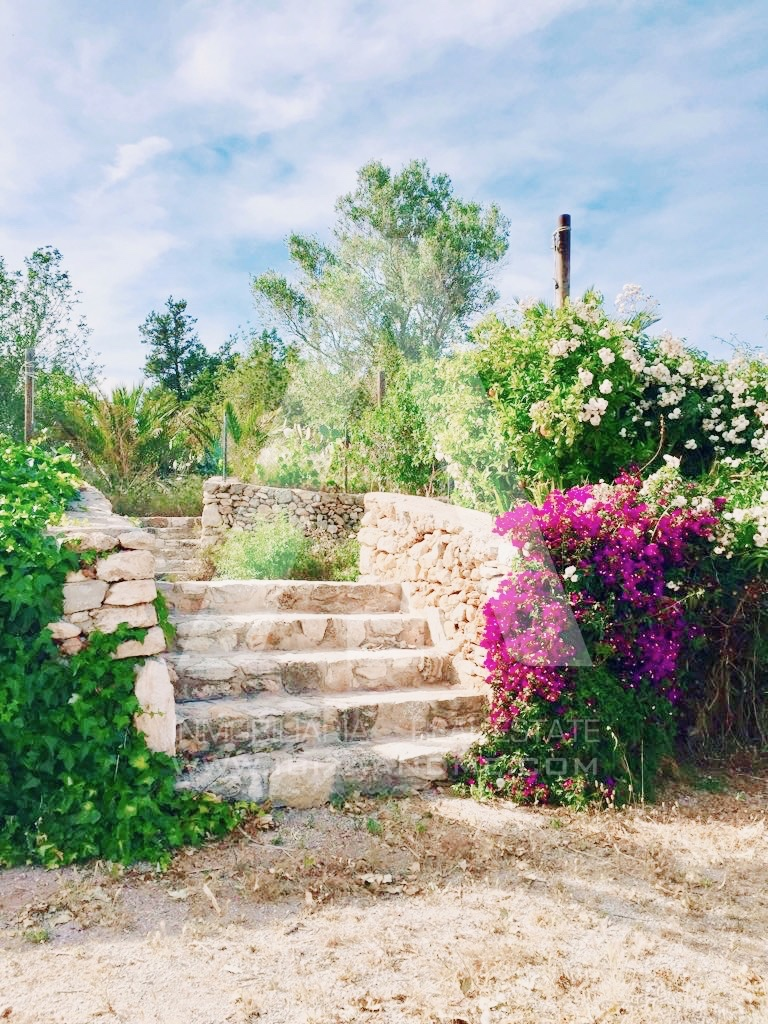 RESIZ_escalera jardin